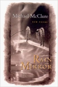 Rain Mirror: New Poems
