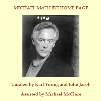 Michael McClure - Light & Dust
